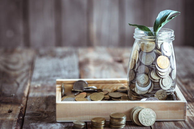 bank-with-coins-green-sprout_169016-3685
