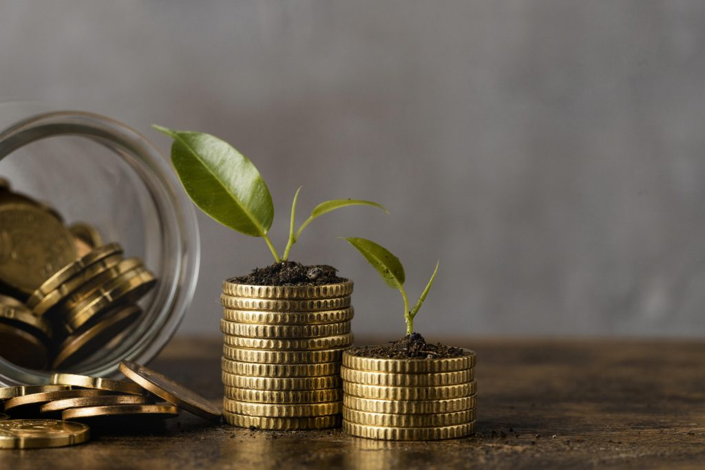 front-view-two-stacks-coins-with-jar-plants